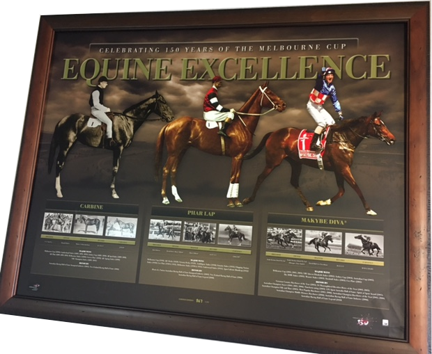 2017-05-equine-excellence-png
